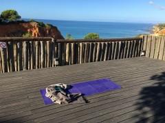 Yoga auf Reisen – GOA Indien